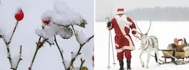 Prognos: De får snö på julafton