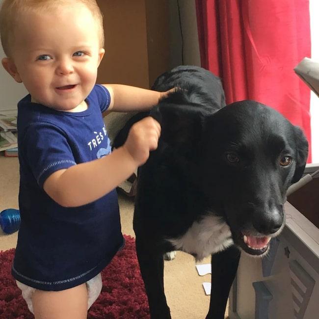 Daniels och Tias hund Milo satte dpck stopp för drömresan. Här tillsammans med parets son Jacob, 2.