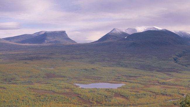 Här, i nationalparken i Abisko, vid Skandinaviens största fjällsjö, börjar Kungsleden.