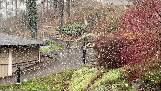 Höstens första snö i Göteborg