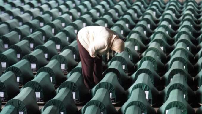 kvarlevor. En bosnisk kvinna bland 613 kistor i Potocari utanför staden Srebrenica. De döda är offer för massakern i Srebrenica i juli 1995. Foto: Darko Vojinovic