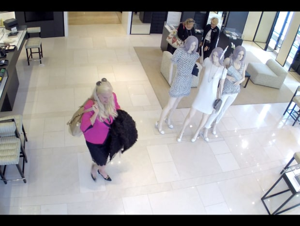 Gunilla Persson avslöjad - av polisens bilder