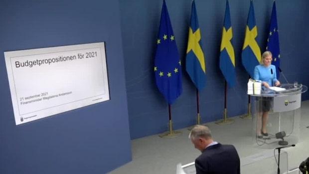 Andersson: Kommer långsiktigt stärka Sverige