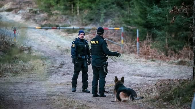 En man hittades död i ett skogsområde utanför Halmstad. Foto: PEO MÖLLER / PEO MÖLLER