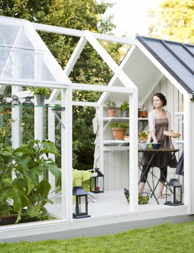 Förläng sommaren och bygg ett växthus Leva& bo Expressen Leva& bo