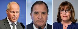 Ännu en statssekreterare  lämnar Löfvens regering