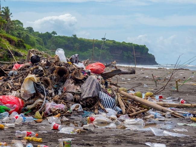 27 december 2018 såg en av Balis stränder ut så här.