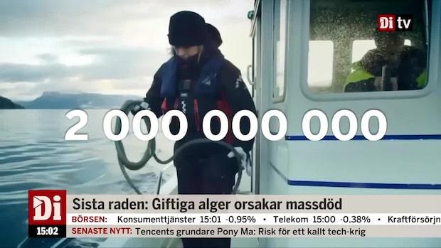 Dagens siffra: Två miljarder norska kronor