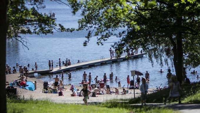 Inte på 155 år har sommarhettan varit sämre i Sverige än vad den var i år. Foto: MICHAELA HASANOVIC