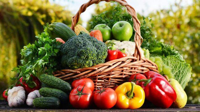 Järnbrist Vegetarian