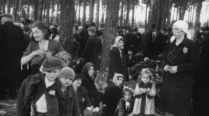 OVISS VäNTAN. Kvinnor, barn och gamla väntar på att klä av sig i en skogsdunge hundra meter från en av gaskamrarna i förintelselägret Auschwitz-Birkenau. Därefter ska de gå in i det rum där de gasas ihjäl för att sedan kremeras i ugnarna i samma byggnad. Foto: Judiska museet
