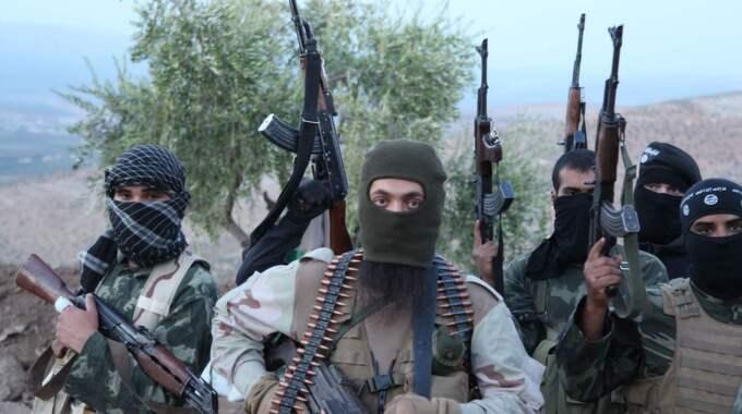 GRANSKA SALAFISTERNA. IS på gränsen till Syrien. På samma sätt som antinazistiska rörelser länge har backats upp genom kartläggande journalistik som bygger kunskap om hur nazisterna organiserar sig så behövs en liknande granskning i fråga om salafismen. Foto: Medyan Dairieh
