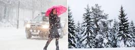 Prognosen: Här finns det hopp om en vit julafton
