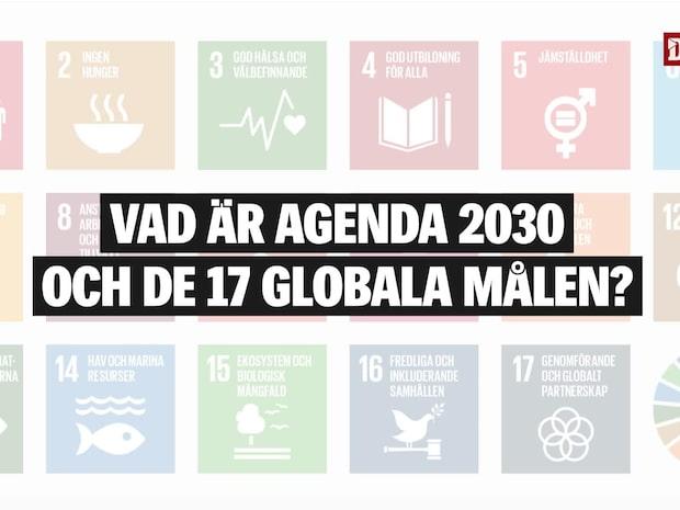Det här är agenda 2030 och de 17 globala målen