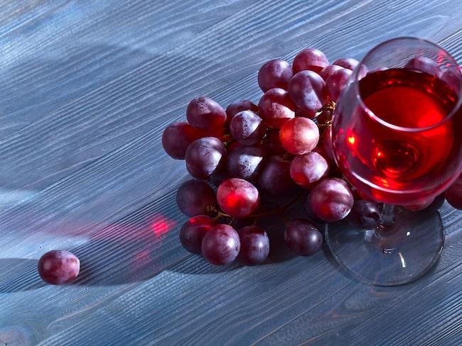 Rödvin mot leversjukdom? Ny forskning visar rött vin kan hjälpa mot sjukdomar orsakade av så kallad fettlever.
