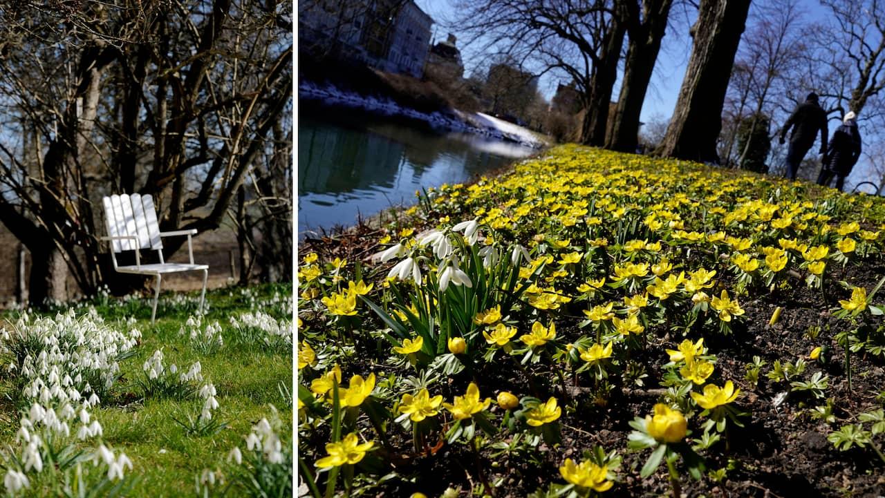 Sol och vår på ingång – Skåne tappar en årstid