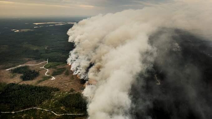 Branden i Västmanland sommaren 2014 är den största i modern tid i Sverige. Foto: / L'ESTRADE JENS EXPRESSEN