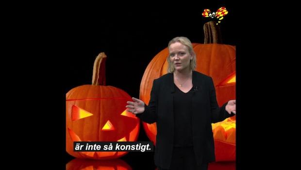 Halloween 2018: När firas högtiden?