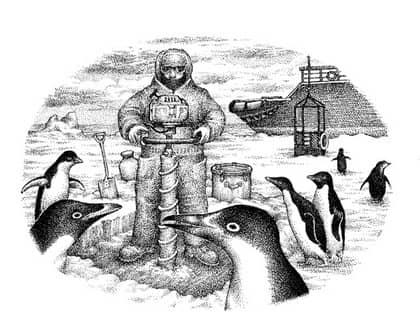 Magellanpingvinerna hotas av oljeutsläpp Foto: Ill: Jakob Wegelius