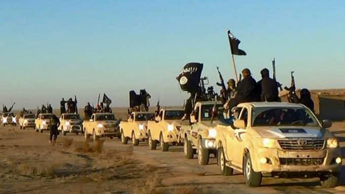 När IS fäste i Raqqa föll kunde Skråmo och hans familj lämna staden. Foto: AP / TT NYHETSBYRÅN