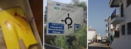 Familjernas sorg efter misstänkta tortyrmordet