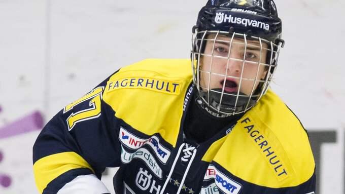Erik Brännström. Foto: STEFAN PERSSON / BILDBYRÅN