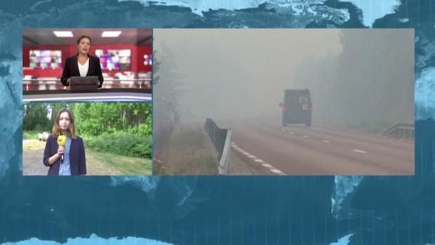 Bränder över hela Sverige: 12 000 hektar brinner här
