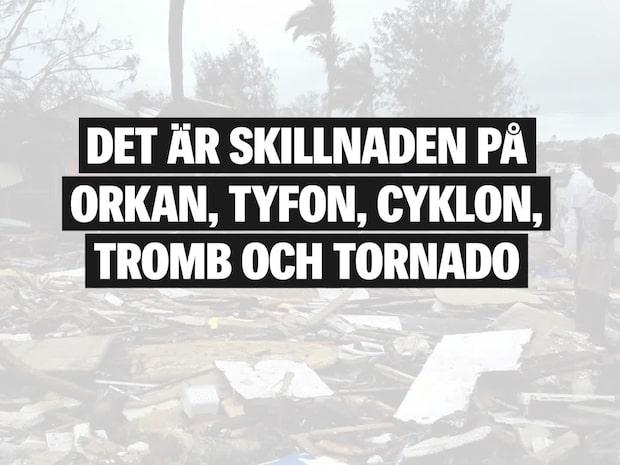 Det är skillnaden på orkan, tyfon, cyklon, tornado och tromb