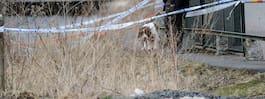 Polisen misstänker: Dödade  sambon i sin pappas stuga