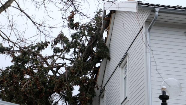 Hårda vindar orsakade problem på många håll i landet