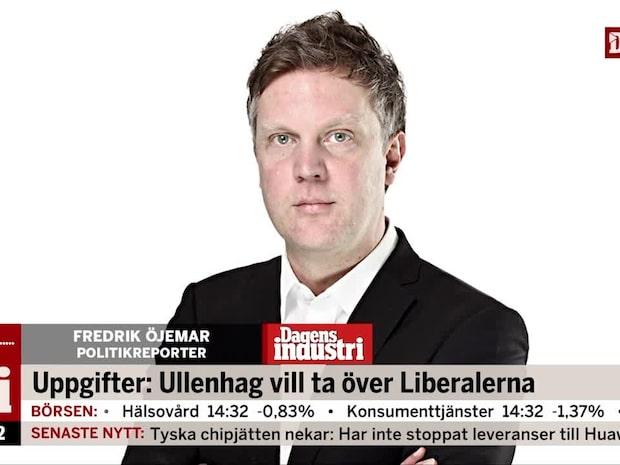 Uppgifter: Ullenhag vill ta över Liberalerna