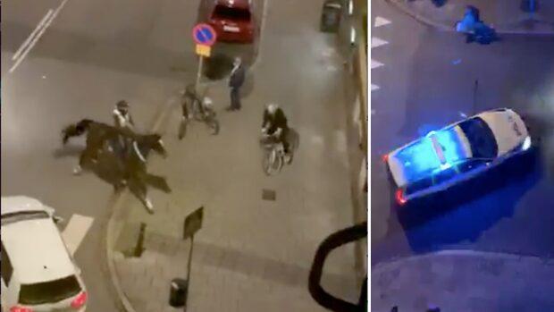 Se när cykeltjuven jagas av ridande poliser