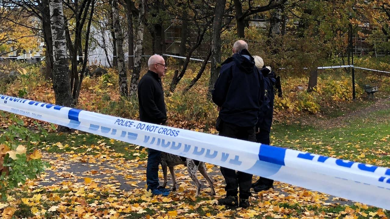 Man död efter att ha hittats skadad i park i södra Stockholm