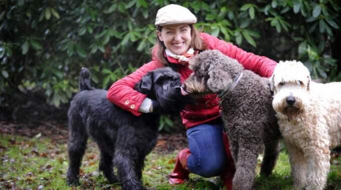 HUNDERBARA ÄVENTYR. Hundarna Buster, Keddy och Nalle följer varandra ut på nya äventyr i naturen. De är huvudkaraktärerna i Jules Nilssons bok. Foto: Christer Wahlgren