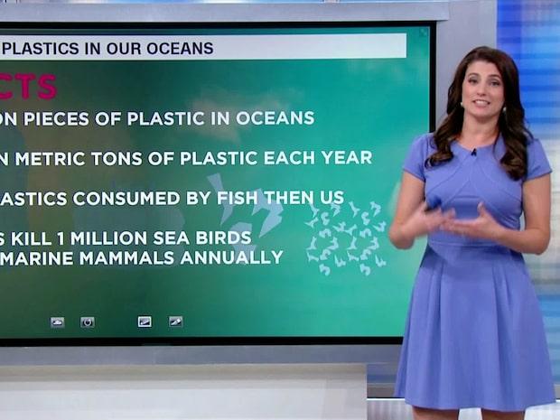 World Oceans Day: Så mycket plast finns det i världens hav