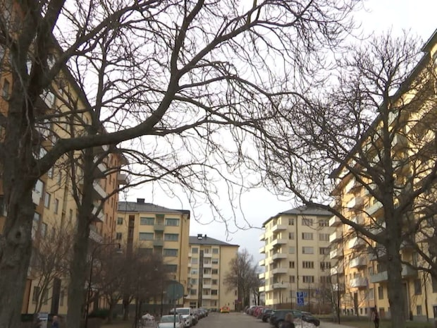 En man misstänks för att ha manipulerat bostadskö