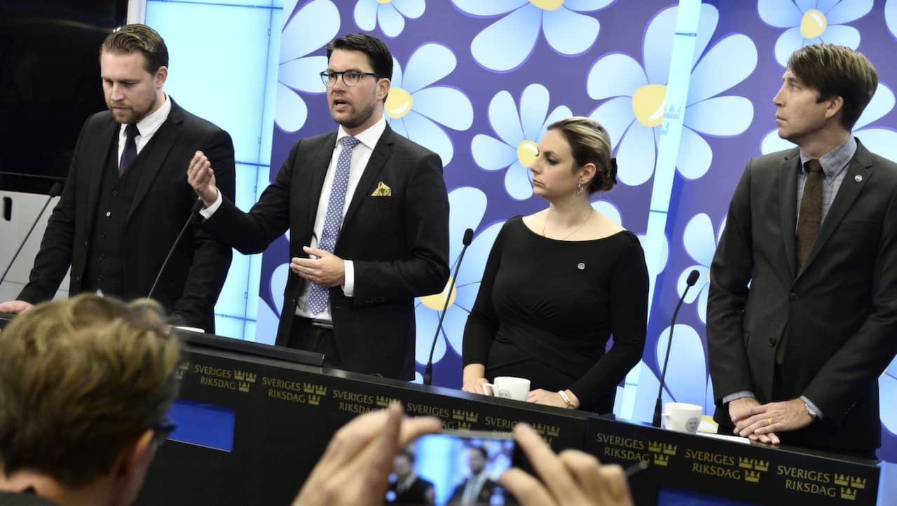 Bildresultat för de som styr Sverigedemokraterna