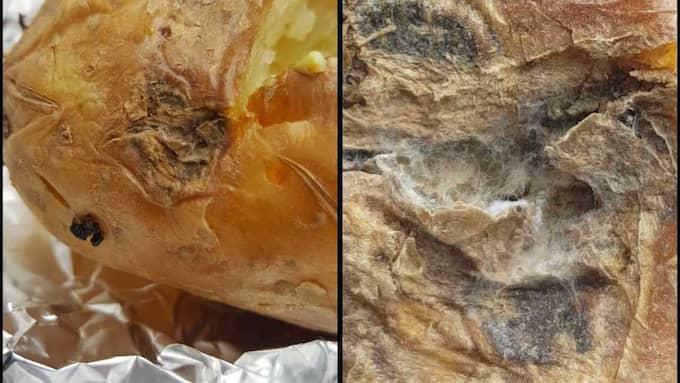 Bilden på potatisen Sanna uppfattade som möglig. Personal på Blå Dörren hävdar att denna bild, som hon visade upp när hon lämnade tillbaka sin lunch, inte föreställer den potatis hon serverades. Foto: PRIVAT