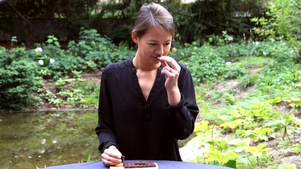 Chokladexperten testar billig choklad