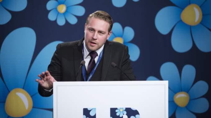 BLOMSTRANDE HÖGERPOPULISM. Sverigedemokraternas gruppledare Mattias Karlsson odlar sin antagonism mot den kosmopolitiska kulturradikalen. Foto: Sven Lindwall