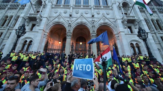 Ungrare protesterar i försvar för Central European University. Foto: ZOLTAN BALOGH / EPA / TT