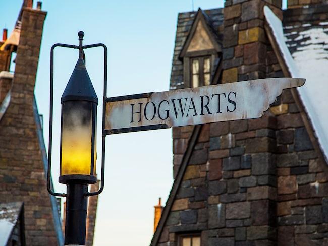 Den 13 juni är det premiär för den nya åkattraktionen i Harry Potter-världen.