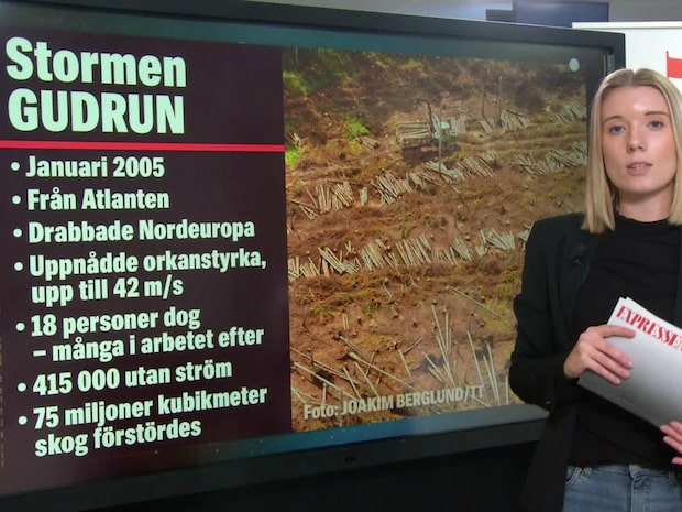 Fem starka stormar i Sverige