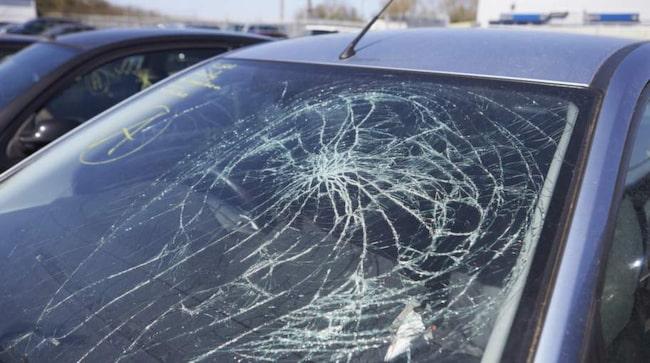 En av fyra kör med trasig eller skadad vindruta i Sverige.