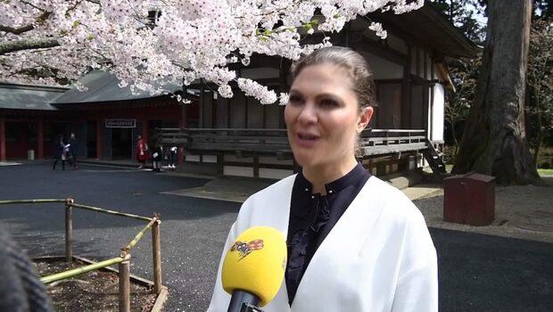 """Kronprinsessan Victoria i Japan: """"Tycker vi haft en bra dialog"""""""