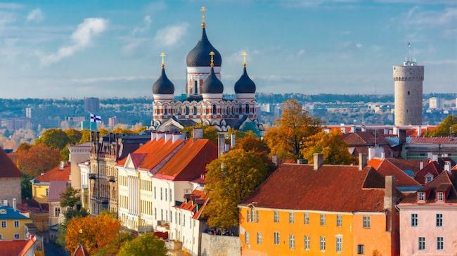 Estlands huvudstad Tallin har mycket att erbjuda, bland annat pampiga byggnader, krogar och hantverksbutiker.