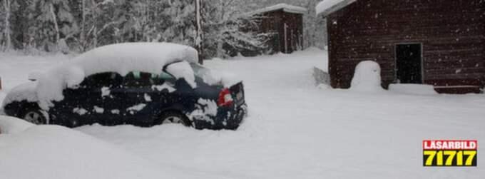 Britta-Karin hade planterat buskar och fått fram utemöblerna - då kom snön igen. Foto: Läsarbild