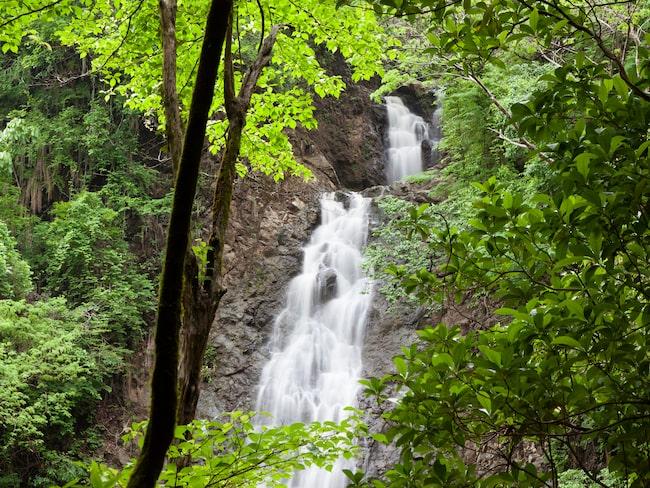 Montezumas vattenfall, väl värt ett besök när du vill ha en paus från stranden.