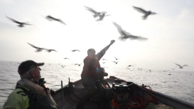 Ålfiskare och boende oroas över ny vindkraftspark