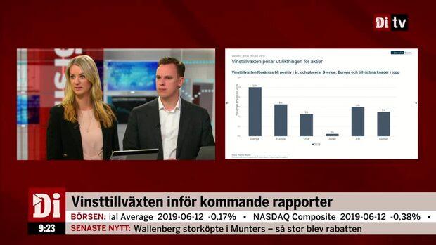 """Landeborn om vinsttillväxten: """"Finns risk för en smäll till"""""""